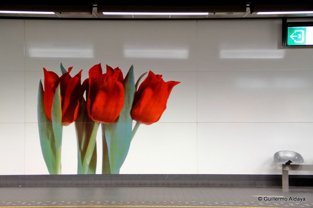 Brussels subway, by Guillermo Aldaya / PhotoConversa