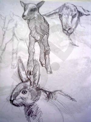 douglas deri, deri, deriart, sketchbook, sketch