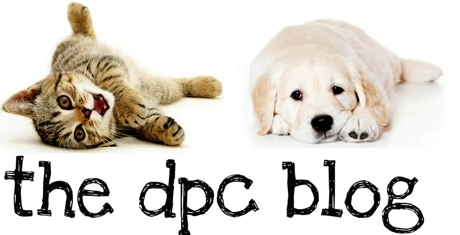 DPC's Blog