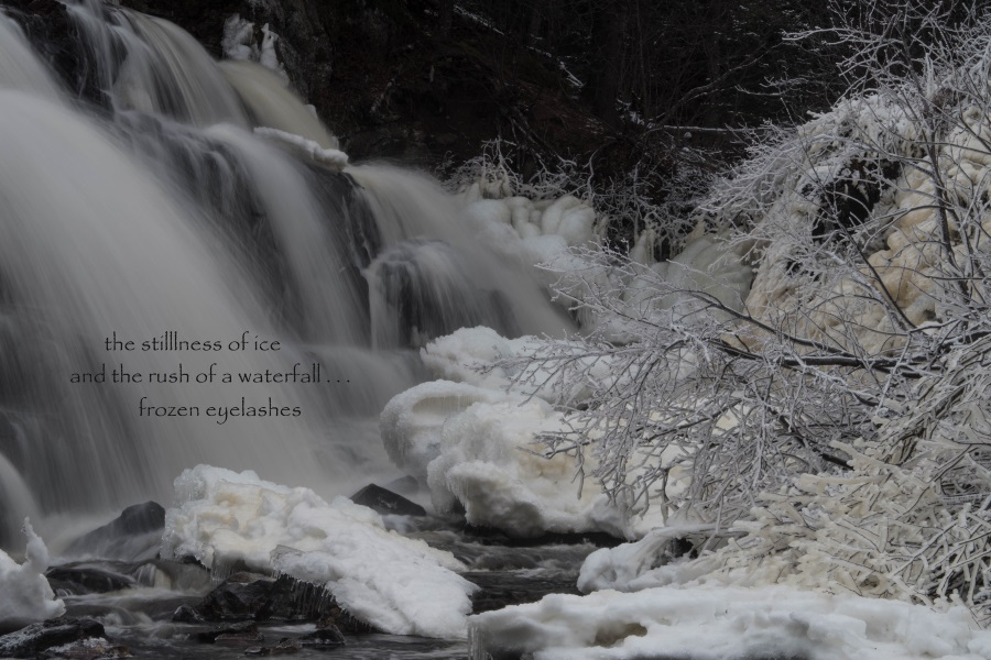 http://fineartamerica.com/featured/mink-falls-on-ice-tim-beebe.html