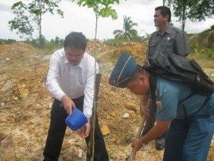 Menhut dan Pemkot Tarakan Tanam 100 Pohon Trambesi - Borneo
