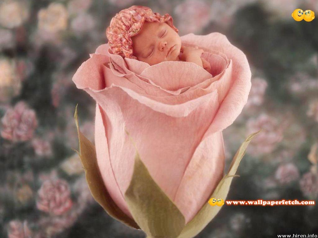 http://1.bp.blogspot.com/-zDbHP7k1HZs/Tygcc0LrhcI/AAAAAAAAHkk/VTJiPFUttz8/s1600/%255Bdibosdownload-blogspot-com%255D-Little-Baby-Wallpapers-140.jpg