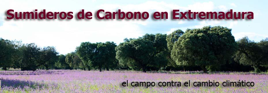 Sumideros de Carbono  en Extremadura