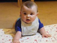 Leo 8 months