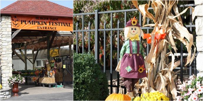 fall-farm-festival