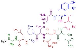 molécula do hormônio ocitocina o hormônio do amor