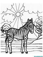 Gambar Zebra Mencari Makan Di Siang Hari