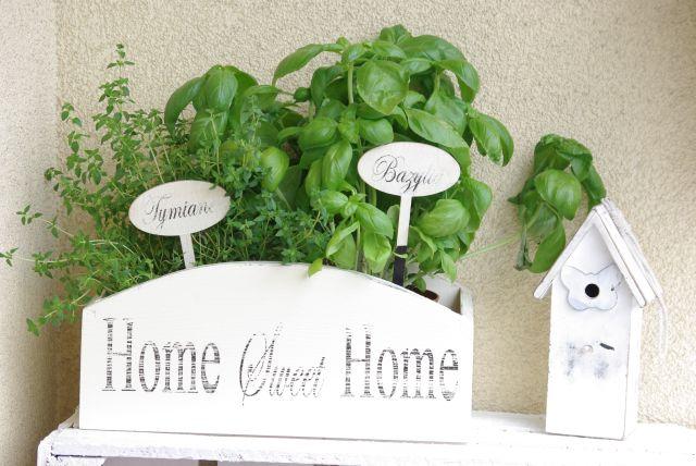 doniczka na zioła, korytko na zioła, tabliczki na zioła