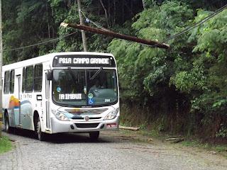 Galhos na rede atrapalham e são um perigo para moradores da Posse Teresópolis RJ
