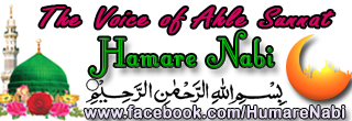 Hamare Nabi: Authentic Hadith/Hadees From Bukhari Muslim Tirmidhi