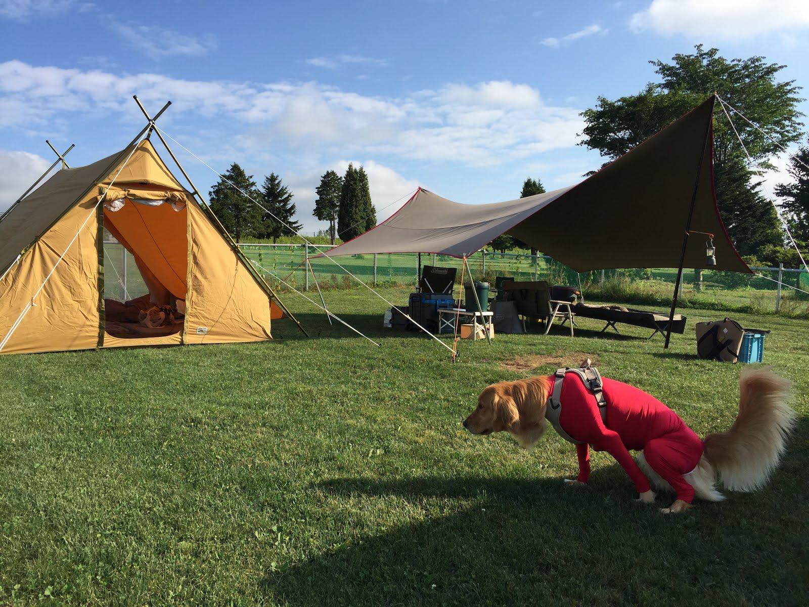 キャンプ 追分
