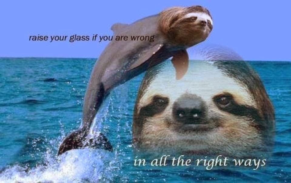 Sloth memes can u not - photo#11