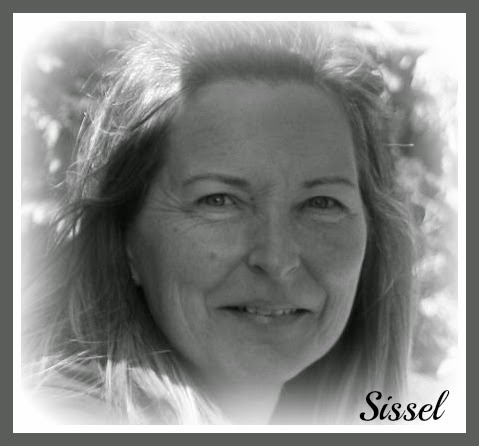 sissel's korthus