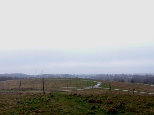 wandern Hunderunde Halde Speckhorn Recklinghausen Oer-Erkenschwick Januar bedeckter Himmel