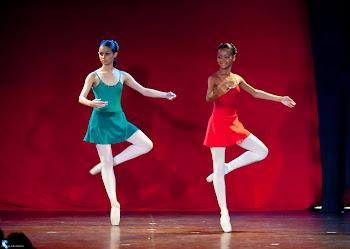 Ballet, Flamenco & Cia