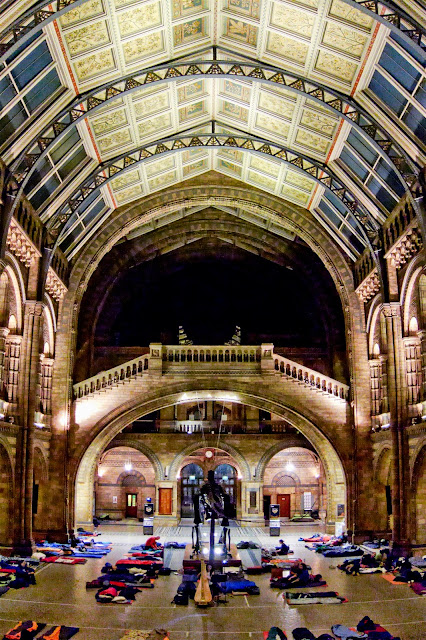 Central Hall at the Natural History Museum Dinosnores for Grown-Ups