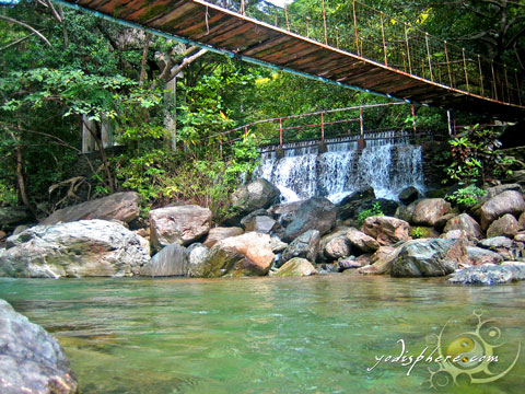 View of the mini waterfalls connecting the hanging bridge