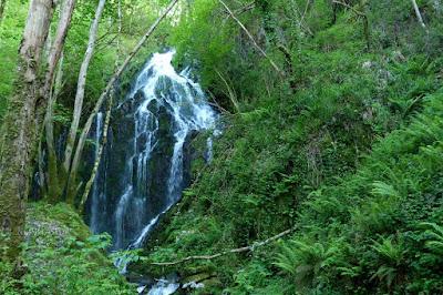 Cascada Salgueira