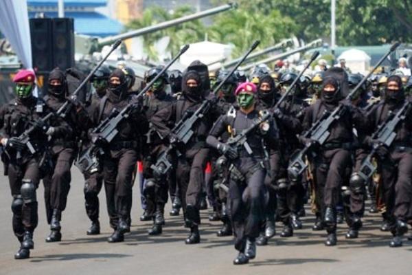 Korps Marinir TNI-AL