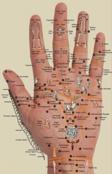 PAHAMI YUK!! Di Telapak Tanganmu Ada Obat Berbagai Macam Penyakit!