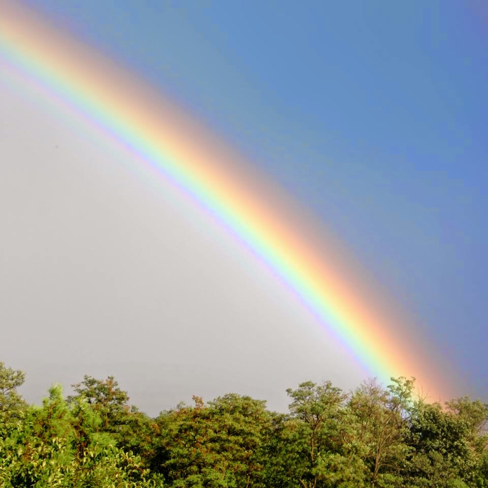 Lovable Images: Beautiful Rainbow WallPapers Free Download ...