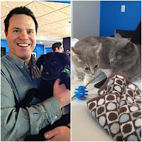 Uber Puppy Bowl, Cleveland APL, Animal Planet, Jeremy Bednarski, Taking It Back