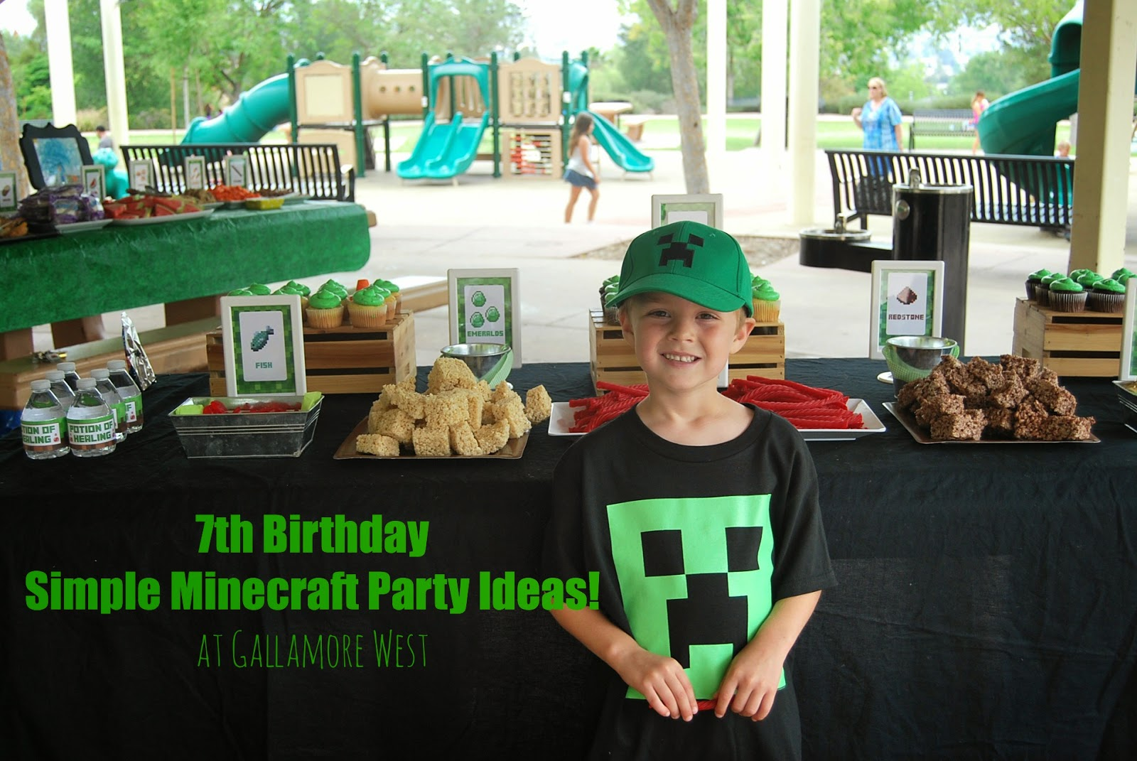 Minecraft Party Ideas at www.gallamorewest.com