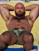 Big Brawny Bear
