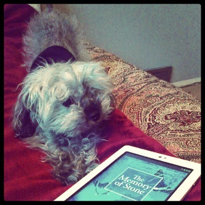 Murchie performs downward facing dog at an angle to a white e-reader with The Memory of Stone's cover on its screen. The cover is blue-toned and depicts two butterflies in flight behind the title card.