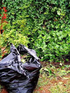 градина,озеленяване