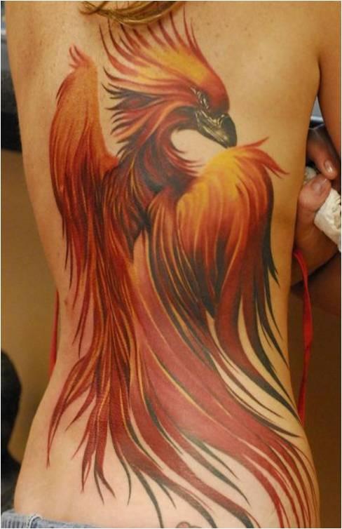 Trend Tattoos: Unique Phoenix Tattoos: trend-tattoos.blogspot.com/2012/05/unique-phoenix-tattoos.html