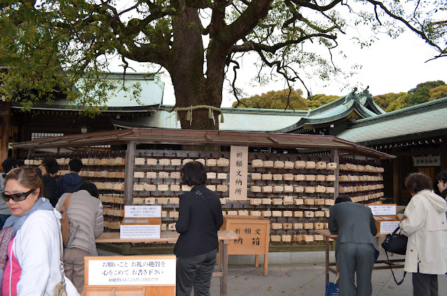 Camphor tree and wish tablet, Meiji Shrine, Tokyo