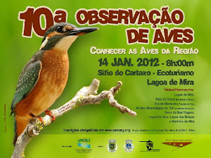 X OBSERVAO DE AVES
