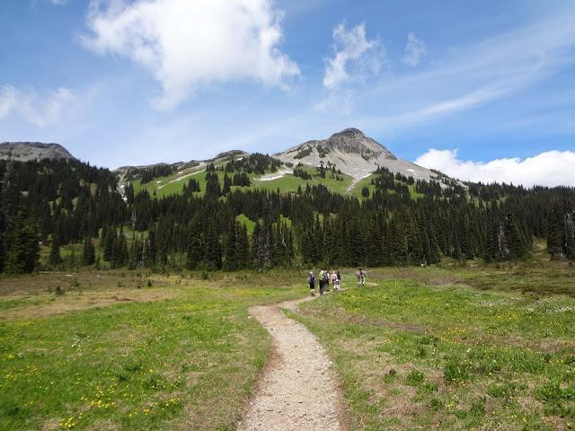 Taylor Meadow, Garibaldi Provincial Park