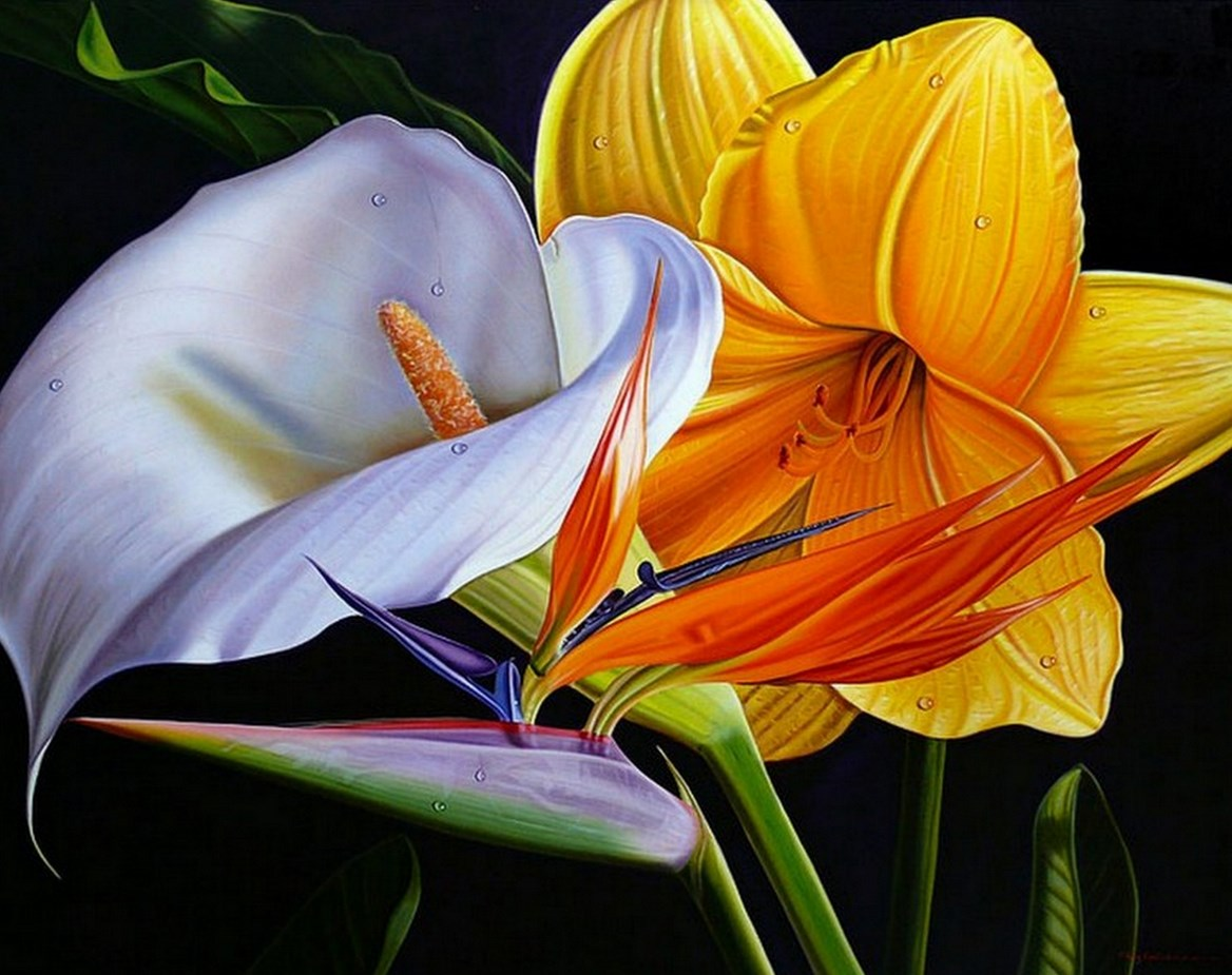 Cuadros modernos pinturas y dibujos galer a de flores for Cuadros de oleo modernos