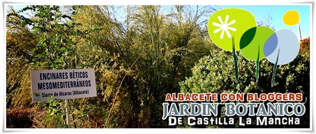 Jardín-Botánico-Castilla-La-Mancha