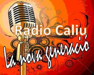 La radio de DIFERENTS