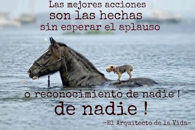 http://1.bp.blogspot.com/-zIkb6SfI9eI/UCphDG0yOmI/AAAAAAAAIFA/Nwdp3-lIQ7c/s1600/Solidaridad+con+el+necesitado.jpg