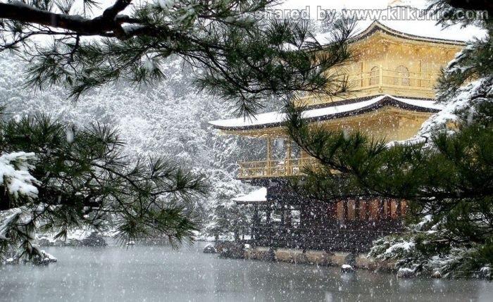 http://1.bp.blogspot.com/-zIwli5I6XkA/TXVxxSEIfpI/AAAAAAAAQDk/_V1o0aw1200/s1600/winter_29.jpg