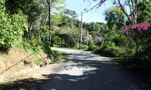 penang hill road