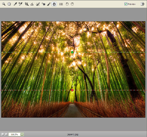 ماهو Adobe Camera Raw - شرح فلتر كاميرا رو