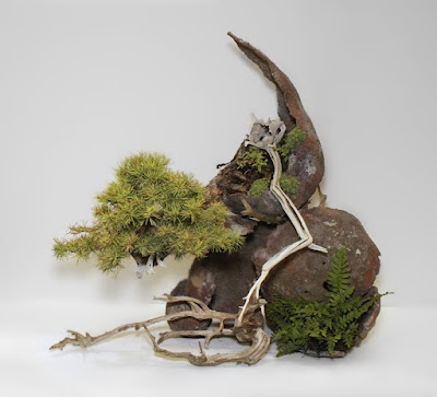 Bonsai Art Nature – Martin Nielsen