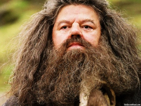 What house was hagrid in 28 images acheter lego rubeus What house was hagrid in