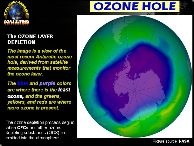 ozone depletion and global warming [w]ere the ozone hole to have been discovered today, governments  the  differences between addressing global warming and the ozone.