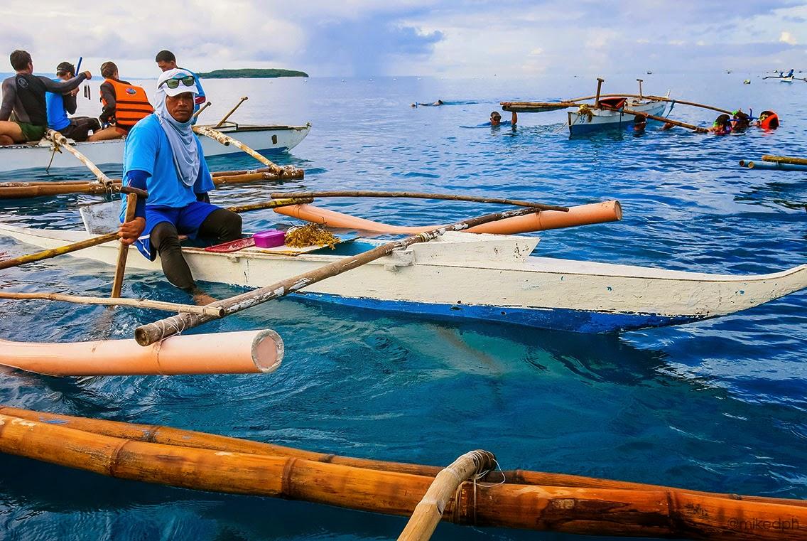 exploring cebu oslob whale shark watching miked s travel ph