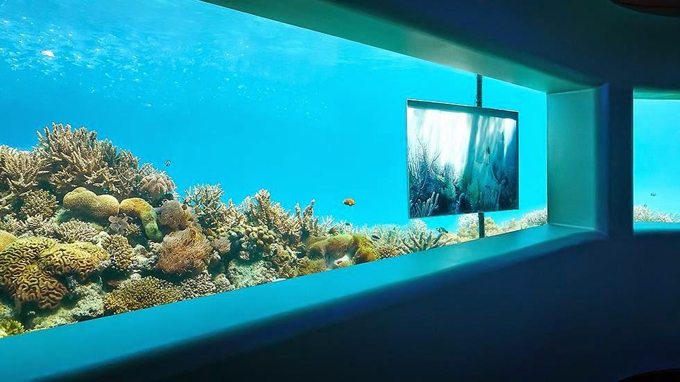 Underwater opulence in the Maldives at Per Aquum's resort Niyama