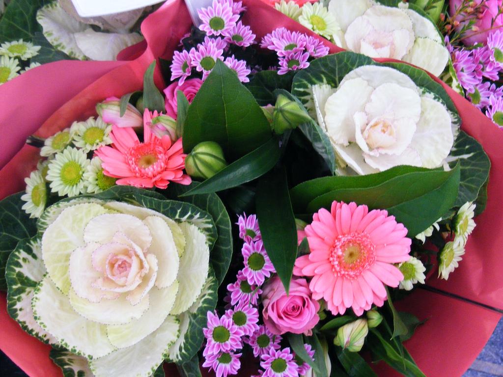 Florist Wilmington Nc Bloomers Flowers Blog Wilmington Nc