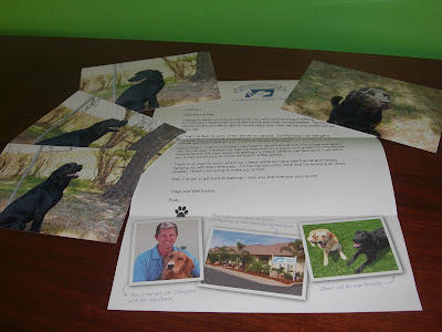 Picture of the letter beside the 4 photos of my handsome boy