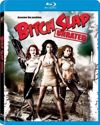 Bitch Slap 2009 Dual Audio [Hindi Eng] BRRip 480p 300mb