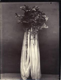 Charles Jones vegetable photography